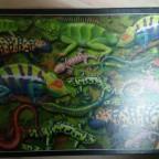 Salamander-Piatnik-1000 Teile