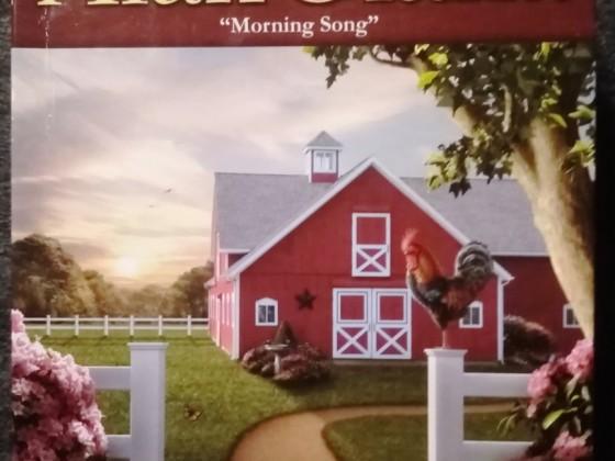 Morning Song, Karmin International, 550 Teile
