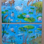 Tiere auf & unter Wasser
