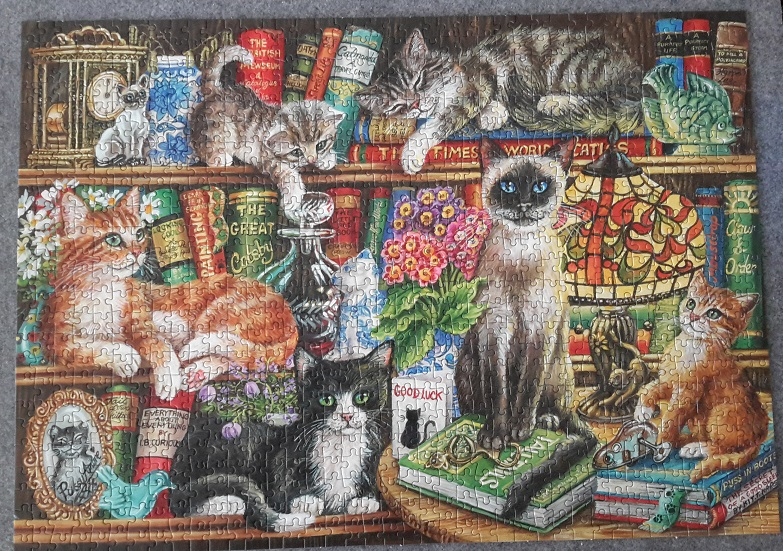 Katzen im Bücherregal, Gibsons G6147, 1000 Teile
