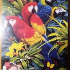 Majestic Macaws, Clementoni, 1000 Teile