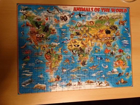 Tiere rund um die Welt