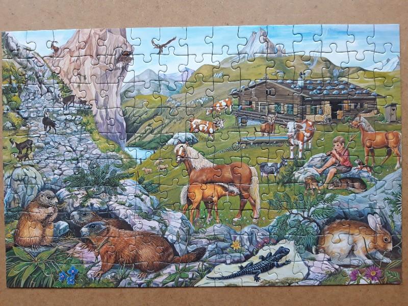 Tiere in den Bergen