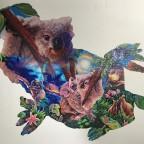 koala kingdom