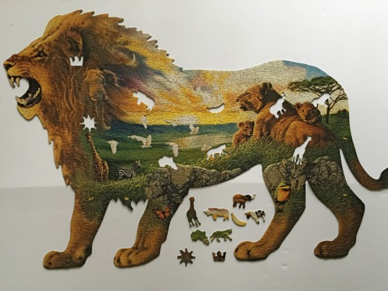 lions pride2