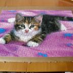 Schmidt Puzzle  500 Teile : Kleine Katze