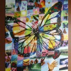 Butterfly Collage1000WELTBILD2007Collage589488680 x 480HochBestand Nr. 005