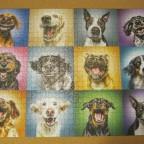Funny dog portraits, 1000 Teile (Trefl)