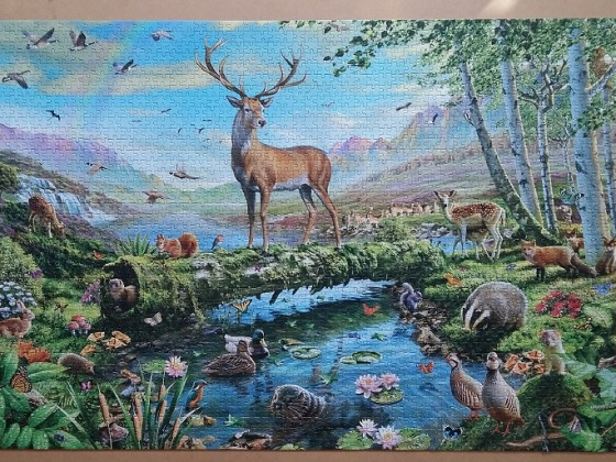 Wildlife Splendour by Adrian Chesterman 2000 Pieces ( Jumbo )
