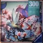 Hummingbird, 300 Teile, Ravensburger