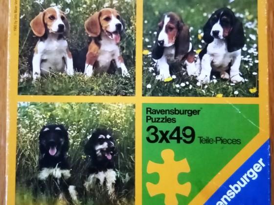 Hunde in der Wiese, 3 x 49 Teile, Ravensburger