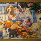 Dogs in the garden, 1000 Teile (Trefl)