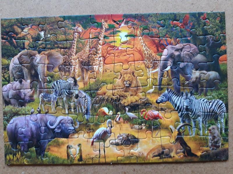 Afrikanische Tiere