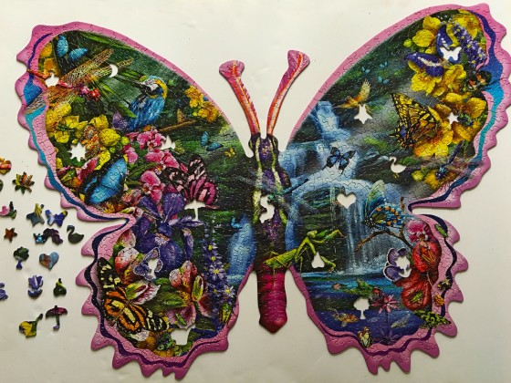butterfly waterfall2