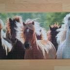 Wildpferde, 1000, Ravensburger