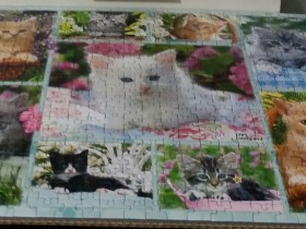 Katzencollage - Puzzle von Kiesel an Bonnie