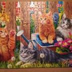 Kittens in the garden, 500 Teile (Trefl)